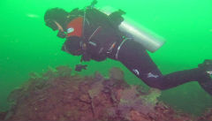 Diving Off Monhegan Island